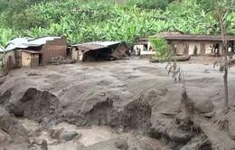 Lở đất gây thương vong lớn ở Uganda