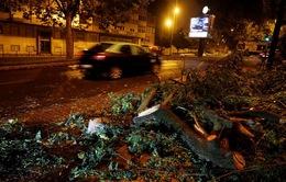 Siêu bão mạnh nhất 150 năm qua đổ bộ Bồ Đào Nha