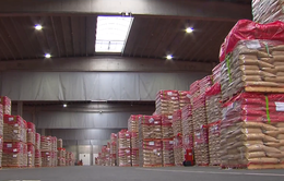 Vì sao hàng nông sản nhập khẩu có thể đánh bại hàng nội địa ngay trên sân nhà?