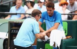 Del Potro bỏ ngỏ khả năng rút lui khỏi ATP World Tour Finals