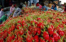 """Nông sản Việt khó """"ghi điểm"""" so với các quốc gia khác: Đâu là nguyên nhân?"""