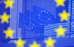 EU thông qua cơ chế trừng phạt mới về sử dụng vũ khí hóa học
