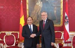 Áo sẵn sàng sàng hợp tác với Việt Nam trong các lĩnh vực