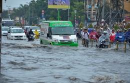 Sụt lún - Nguyên nhân hàng đầu gây gia tăng triều cường ở ĐBSCL