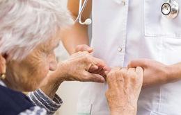 Gần 50% nữ giới có nguy cơ mắc các bệnh thoái hóa thần kinh