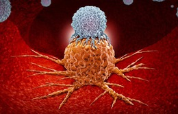 Ý nghĩa giải Nobel y học 2018 trong việc điều trị ung thư