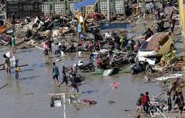 Hồi ức về thảm họa động đất, sóng thần tại Indonesia của 10 sinh viên Việt Nam