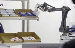 Xu hướng robot làm việc cùng con người