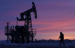 Thị trường dầu mỏ tương đối ổn định sau vụ nhà báo Saudi Arabia thiệt mạng