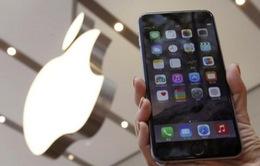 Apple và Samsung bị kiện vì nguy cơ gây ung thư từ điện thoại