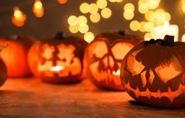 Xu hướng tìm kiếm của người Việt trong dịp lễ Halloween?