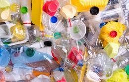 Phát hiện 9 loại hạt vi nhựa có trong cơ thể người