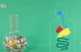 Nhựa đã xâm nhập chuỗi thức ăn của con người