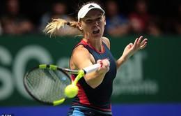 ĐKVĐ Wozniacki sớm dừng bước tại WTA Finals 2018