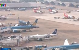 Đoàn 8 du khách gặp nạn trong vụ đánh bom ở Ai Cập sẽ về nước trong ngày 31/12