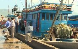 Đà Nẵng: Đẩy mạnh tuyên truyền chống khai thác hải sản trái phép