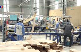 """Hiệp định VPA/FLEGT: """"Giấy thông hành"""" cho gỗ Việt vào EU"""