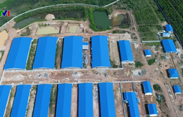 Tháo dỡ trang trại nuôi lợn ở đầu nguồn sông Đồng Nai