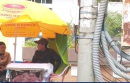 Phú Yên: Khó ngăn chặn vi phạm hành lang an toàn lưới điện