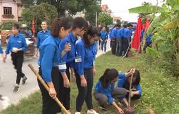 Gần 10.000 cây xanh sẽ được trồng tại một số vùng ở Việt nam