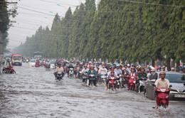 Triều cường gây khó khăn cho người dân tại Đồng bằng sông Cửu Long