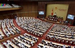 Hôm nay (2/11), Chủ tịch nước trình Quốc hội xem xét thông qua CPTPP