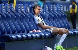 Ibrahimovic lỡ hẹn với vòng playoff MLS
