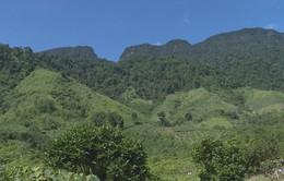 Mô hình cộng đồng dân cư bảo vệ rừng phát huy hiệu quả