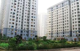 Đà Nẵng gia hạn thời gian miễn tiền thuê nhà đối với các hộ thuộc diện giải tỏa được bố trí chung cư
