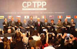CPTPP có hiệu lực cuối năm nay