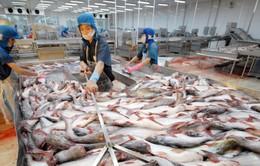 UNCTAD chọn Việt Nam để chia sẻ kinh nghiệm trong chính sách phát triển thuỷ sản