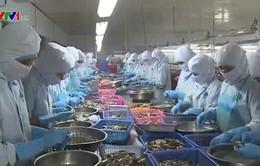 WB nâng dự báo tăng trưởng GDP Việt Nam lên 6,8%