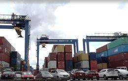 Quy định kiểm tra 100% container phế liệu gây ùn ứ tại các cảng