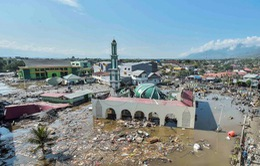 """""""Lực bất tòng tâm"""" tại tâm chấn động đất, sóng thần Indonesia"""