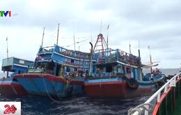 Nhiều tàu đánh bắt hải sản vi phạm hành lang an toàn đường ống dẫn khí dưới biển