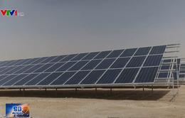 Xu hướng sử dụng năng lượng tái tạo ngày một tăng tại Jordan