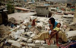 Động đất ở Haiti, 14 người thiệt mạng