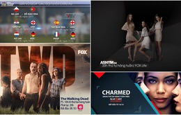 Những chương trình đặc sắc trên VTVcab tháng 10 không nên bỏ lỡ