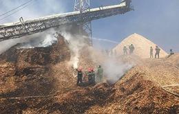 Cháy tại Nhà máy chế biến dăm gỗ Cát Phú Cam Ranh