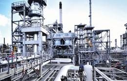 Xu thế giá dầu trước tác động của lệnh cấm vận Iran