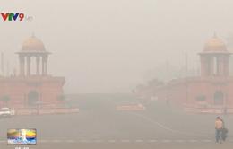 Ấn Độ: Ô nhiễm không khí vì đốt rơm rạ