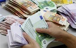 Nga có thể sử dụng đồng Euro trong thương mại với EU