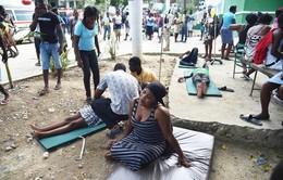 Gần 350 người thương vong do động đất tại Haiti