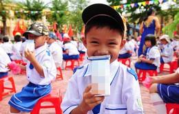 TP.HCM: Hơn 84% phụ huynh đồng ý đề án Sữa học đường