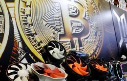 Đào Bitcoin hủy diệt Trái Đất nhanh hơn đào than
