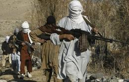 Taliban cử cựu tù nhân đi đàm phán hòa bình