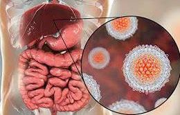 Bệnh viêm gan A và vaccine phòng ngừa