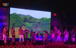 Khai mạc Lễ hội hoa dã quỳ lần thứ 2 năm 2018