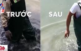 Quảng Ninh: Xử lý ô nhiễm môi trường nước bằng bột thiên nhiên Bakture
