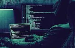 Thêm một vụ hacker thông tin doanh nghiệp